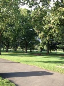 ロンドンの公園の写真♪